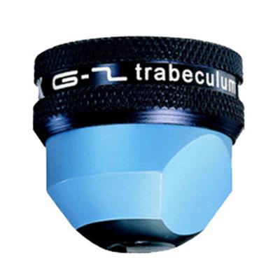 G2 Trabeculum - VOLK